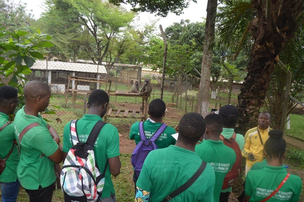 La visite du parc zoologique de Mvog Betsi à Yaoundé